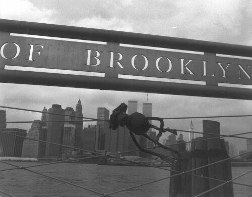 Newyork_sw01