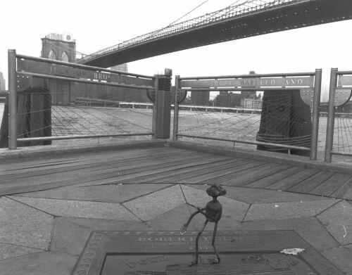 Newyork_sw02